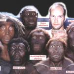 Teorias de la aparición del hombre