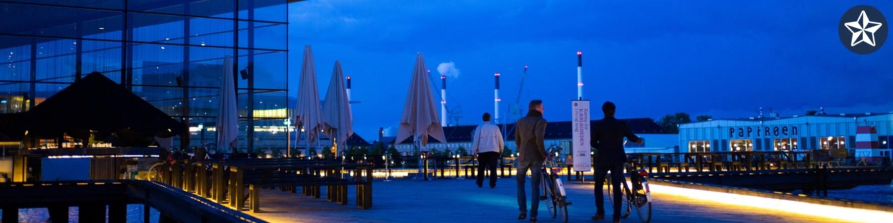 Copenhagen Banner.jpg
