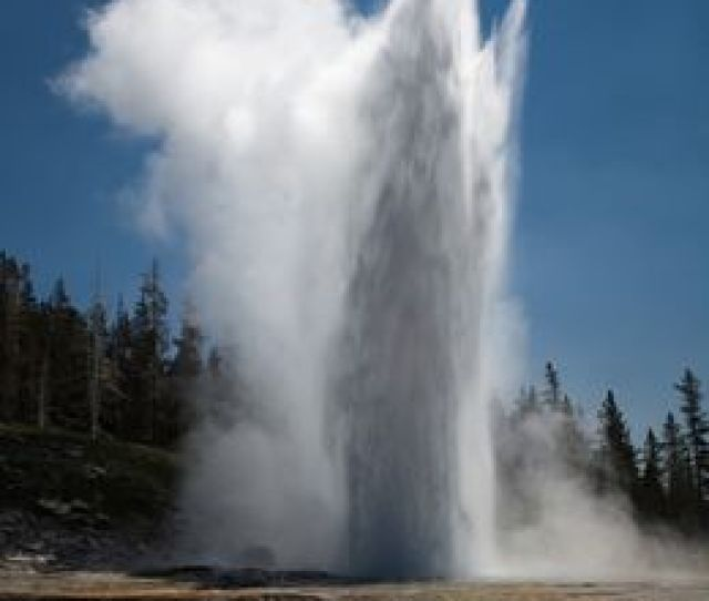 The Grand Geyser The Largest Predictable Geyser In Yellowstone Can Spout Boiling Water Over  Feet In The Air