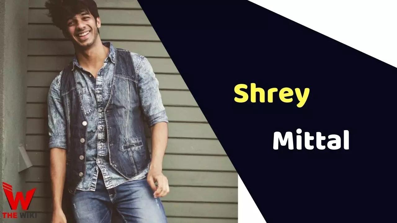 Shrey Mittal (MTV Splitsvilla)