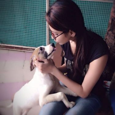 pet with dog