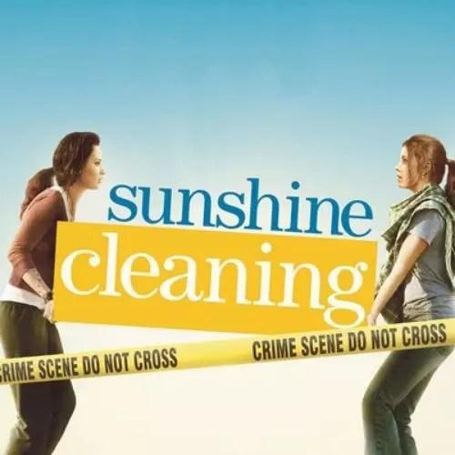 Sunshine Cleaning (2009)