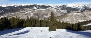 White River National Forest, Vail Colorado 2018, photo credit wikiWings