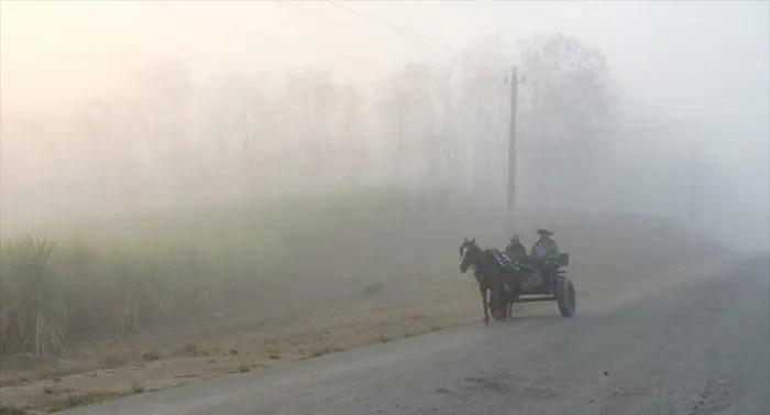 Niebla en las fotos con iPhone