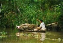 Goods Transportation, Mekong, Vietnam