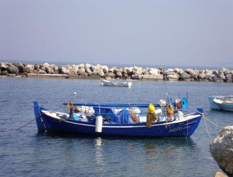 Blue Boat 3