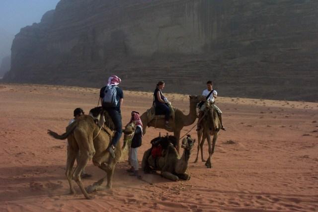 Jordan, Wadi Rum, Camels