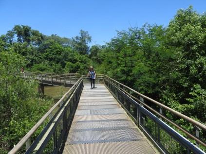 Iguaza Falls Walkway