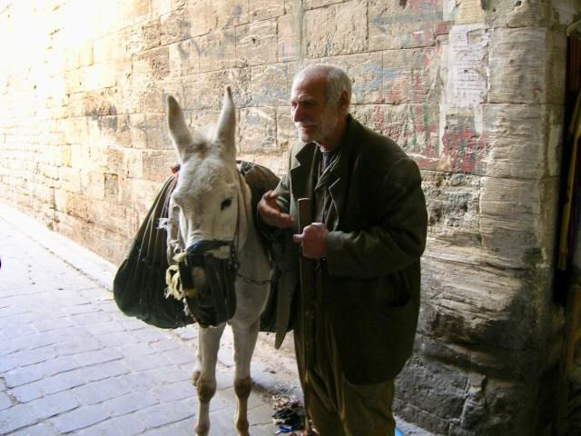 Old Man, Old Donkey, Aleppo, Syria