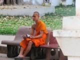 Monk Novice