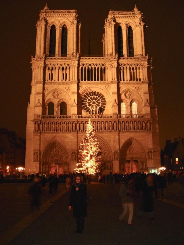 Notre dame Christmas Tree, Paris
