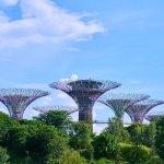 Singapore through the eyes of Kalyra