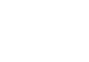 Wild Spirit Tattoo in Hameln Logo
