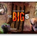 big5 1
