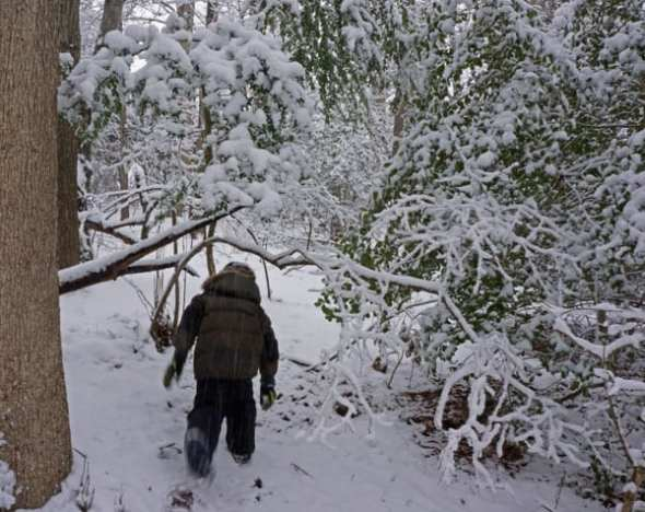 walking snow filled woods