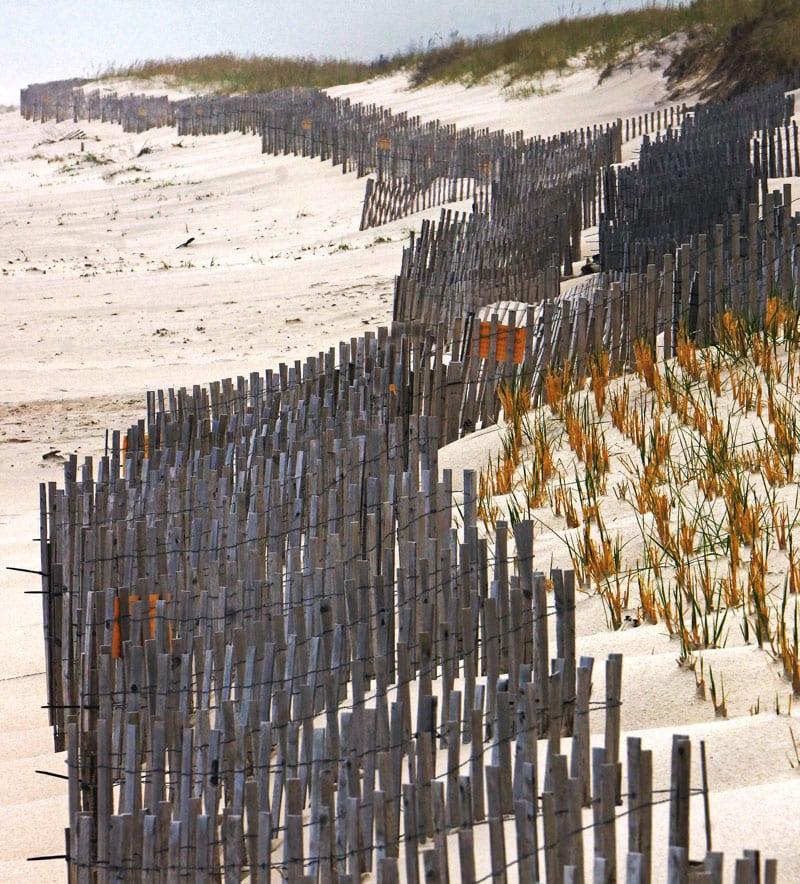 Fencing on Atlantic beach Hamptons