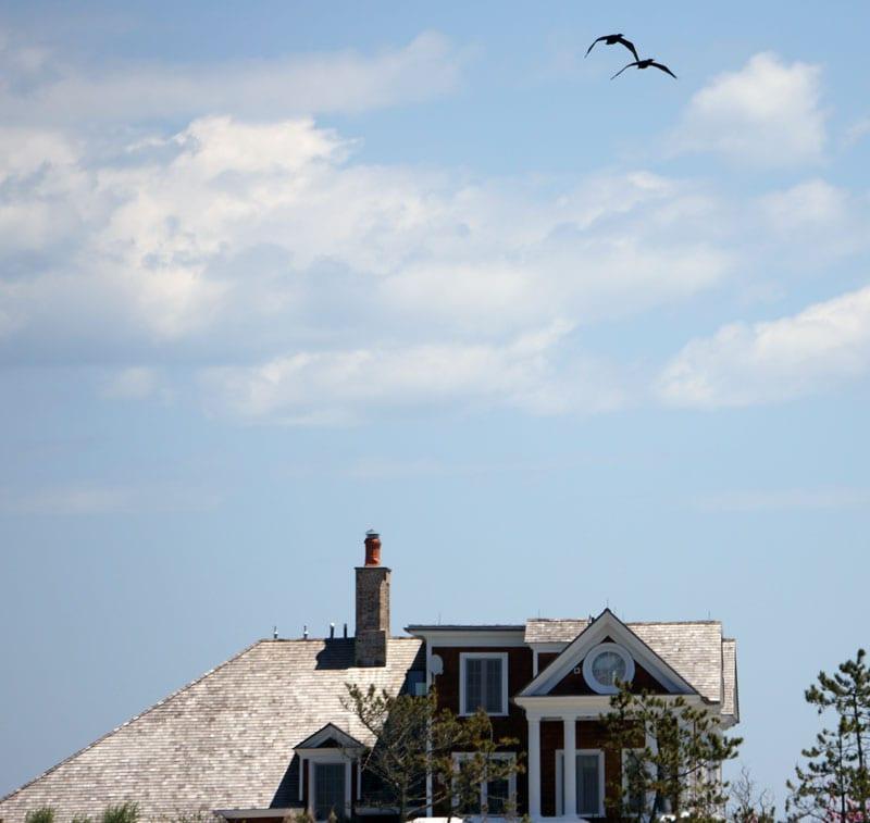 Birds flying over house on Shinnecock Bay