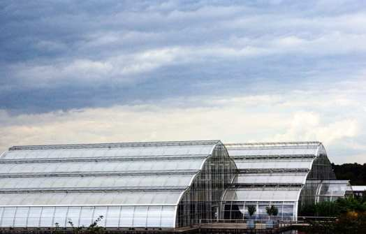 the Glasshouse at RHS Garden Wisley