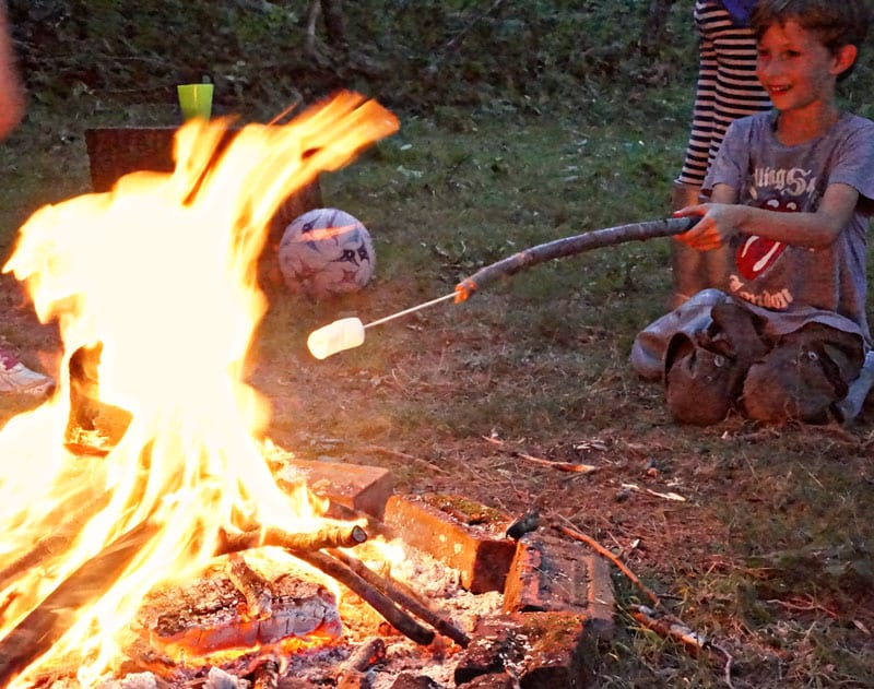 marshmallows roasting campfire