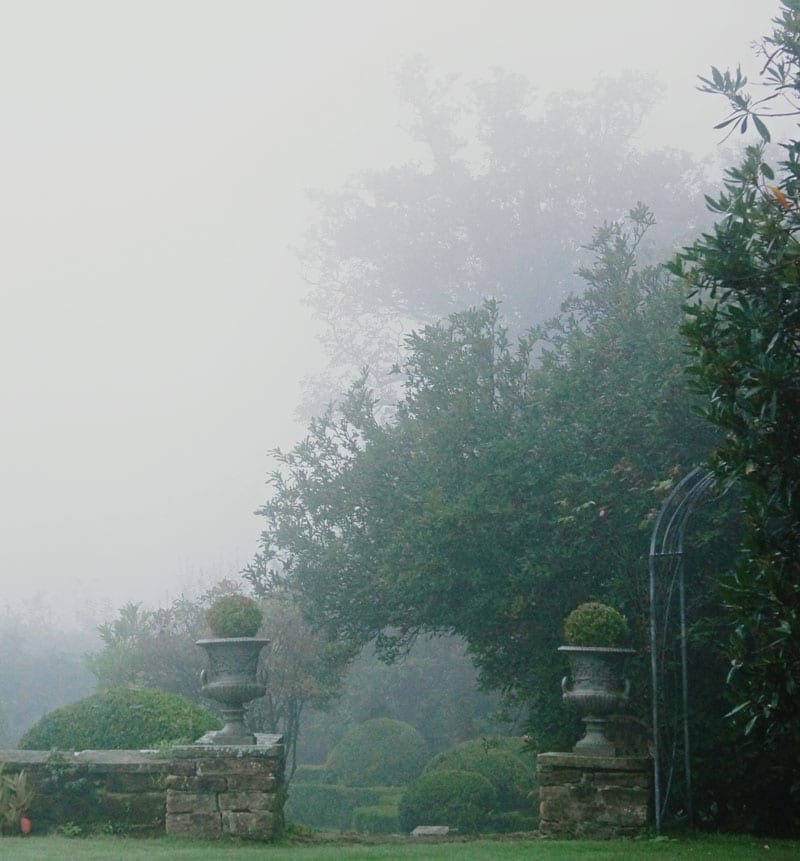 landscape autumn fog
