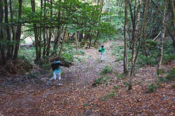 kids hunting mushrooms in woods