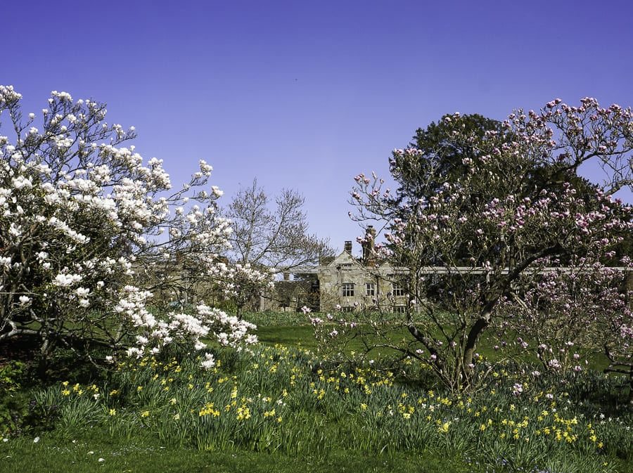 Gravetye Manor and flowers
