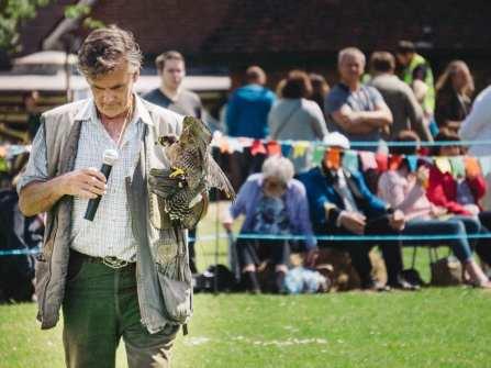 Bird of prey demo at village fair