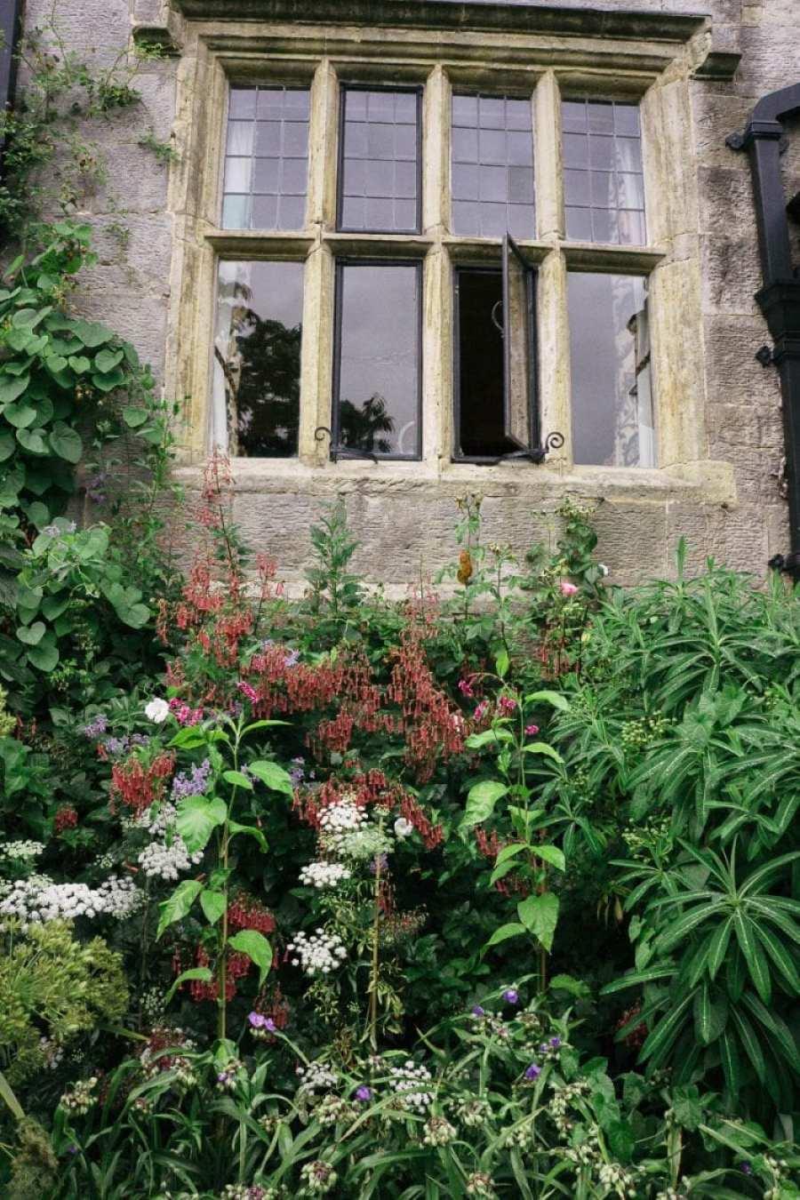 Flower bed below Gravetye window in summer