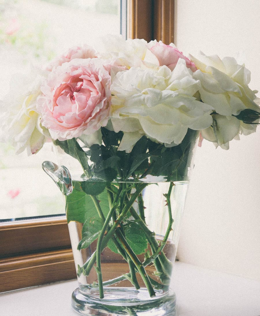 Vase with pink and white roses