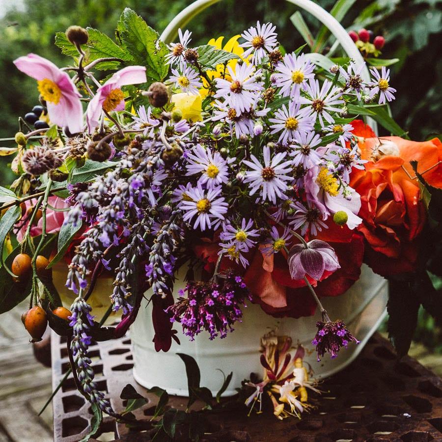 September daisies anemones lavender roses honeysuckle