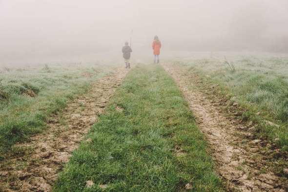 Autumn walk in the mist