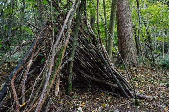 Den castle in the woods