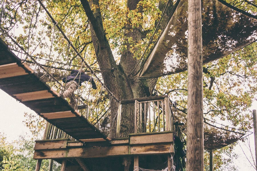 Groombridge Place treehouse walkway