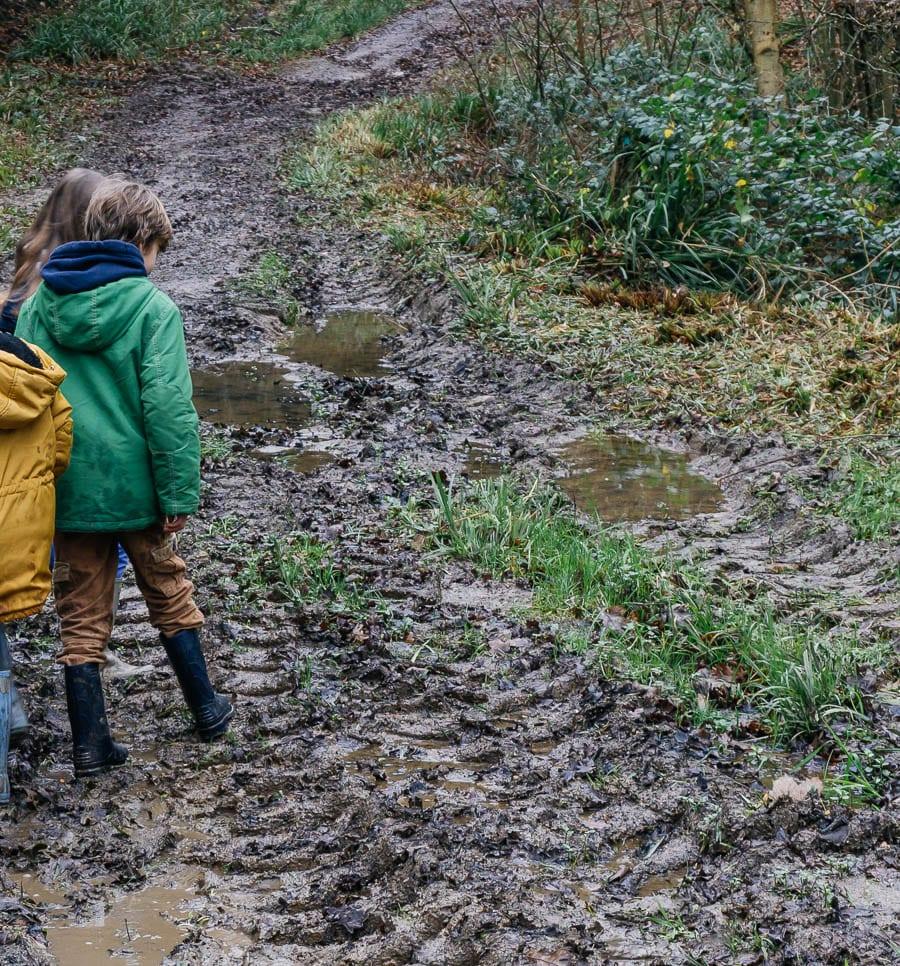 Mud Puddle Walk puddles