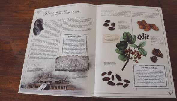 The Plant Hunters on Botanical Adventurers