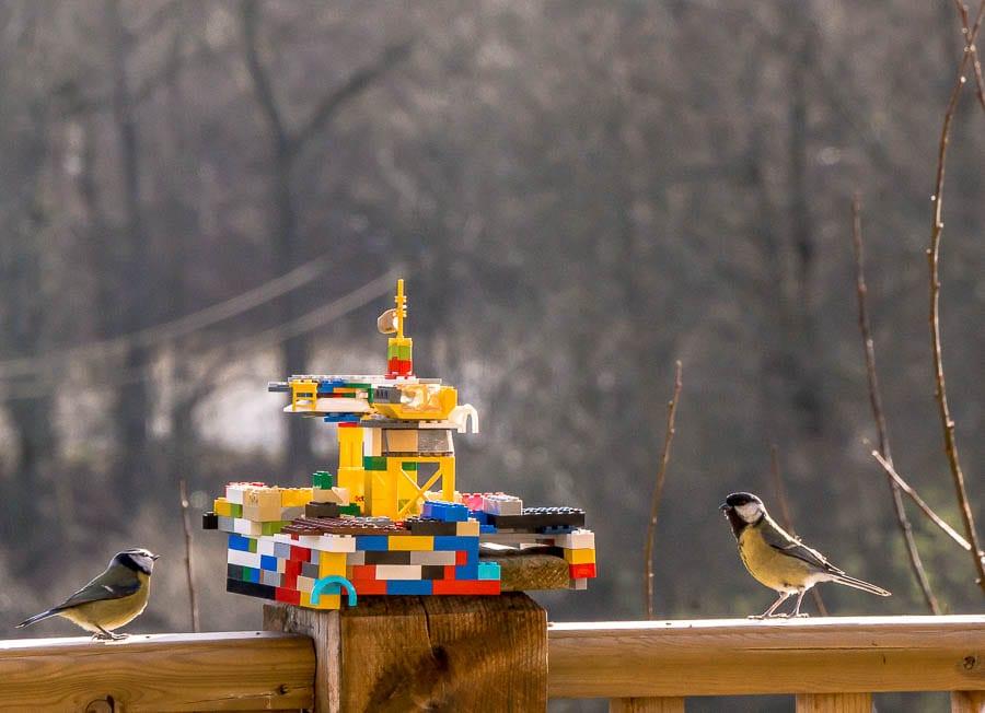 Kids bird watching Lego bird feeder and bird