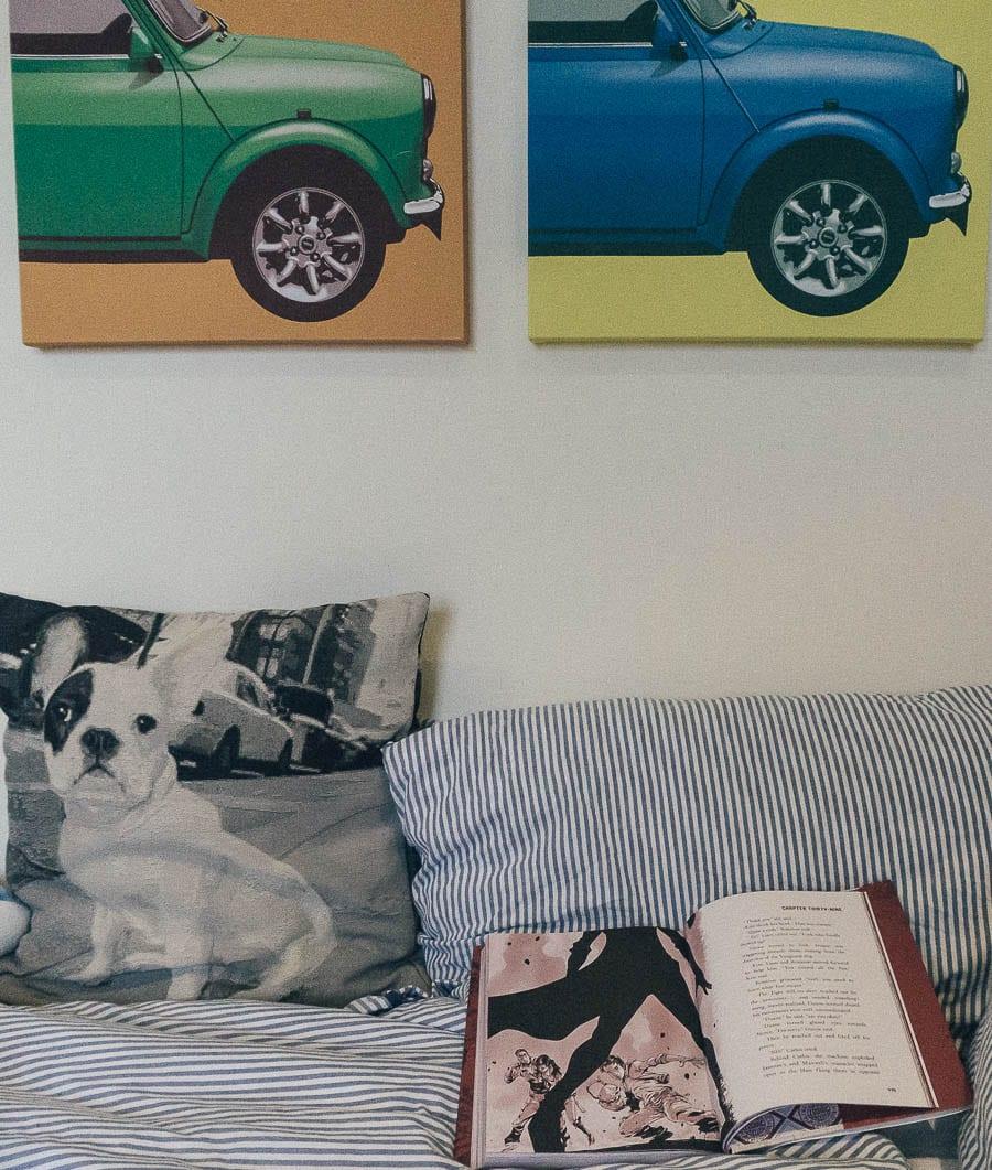 Zodiac book on boy's bed