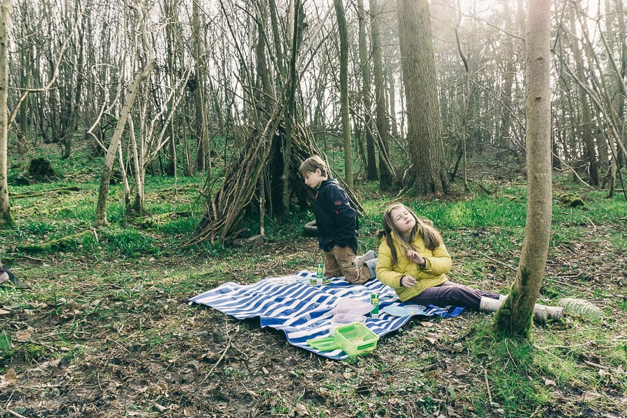 Picnic in the woods with kids