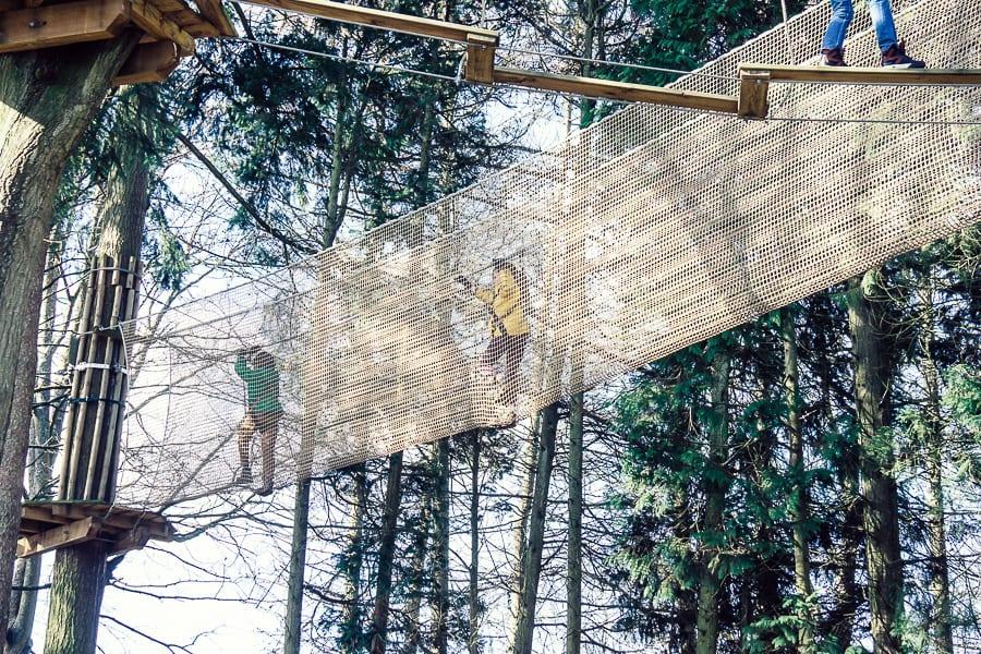 Treetop adventure net crossing