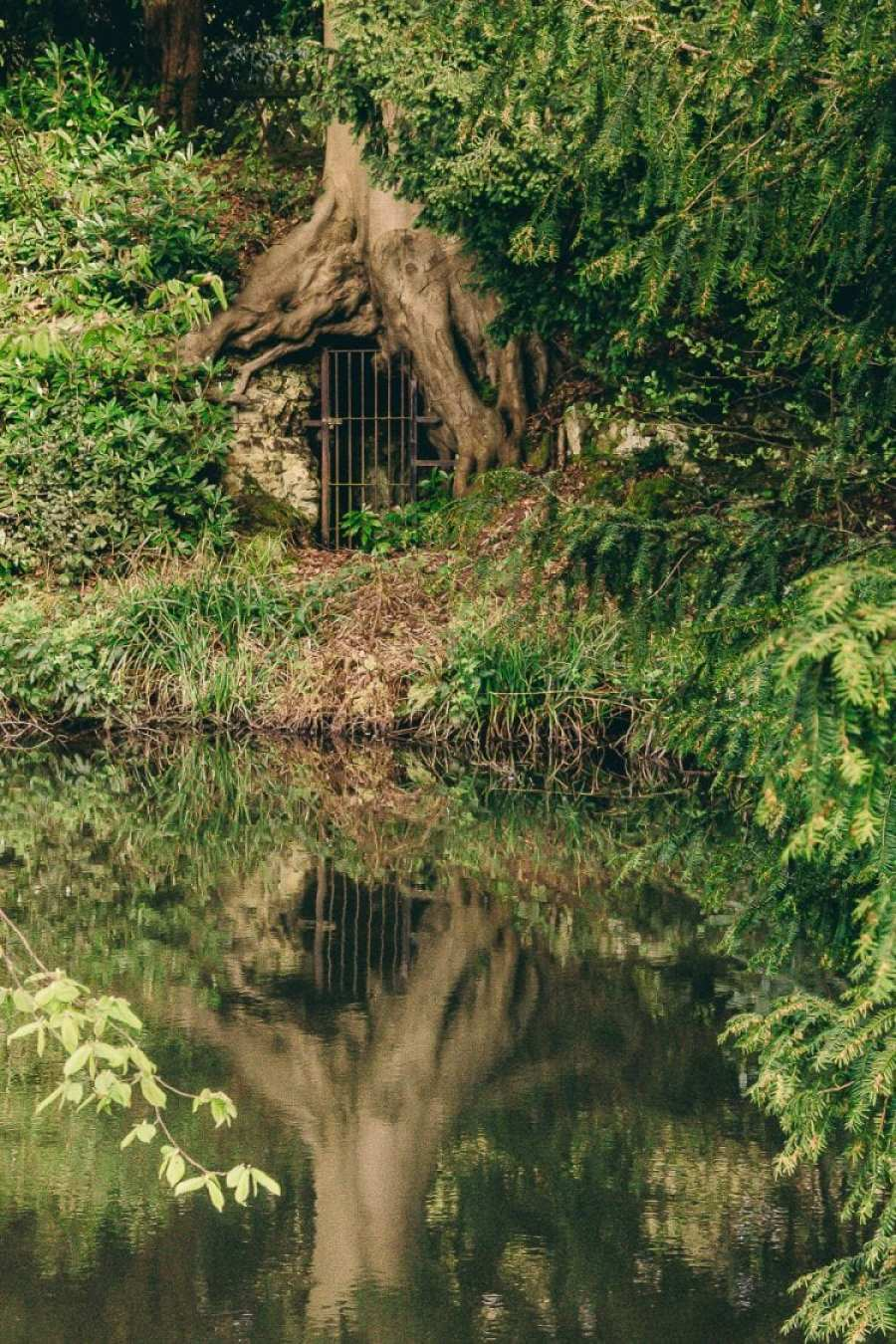 Chiddingstone Castle tree tomb reflection