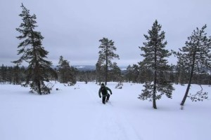 Wilderness Tour