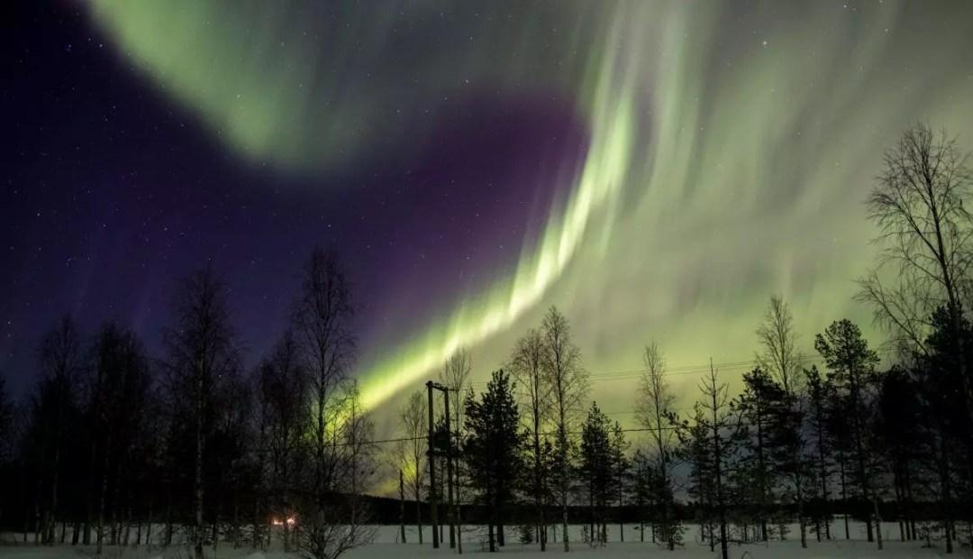 Northern Lights - Rovaniemi- Wild About Lapland