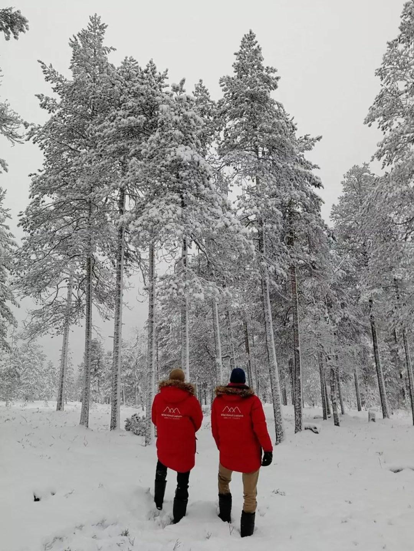 Snow adventure Lapland