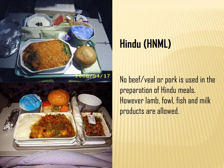 Special Meals Decoded Descriptions and Ticketing Codes  Wild About Travel