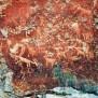 Petroglyphs Archives Wild About Utah