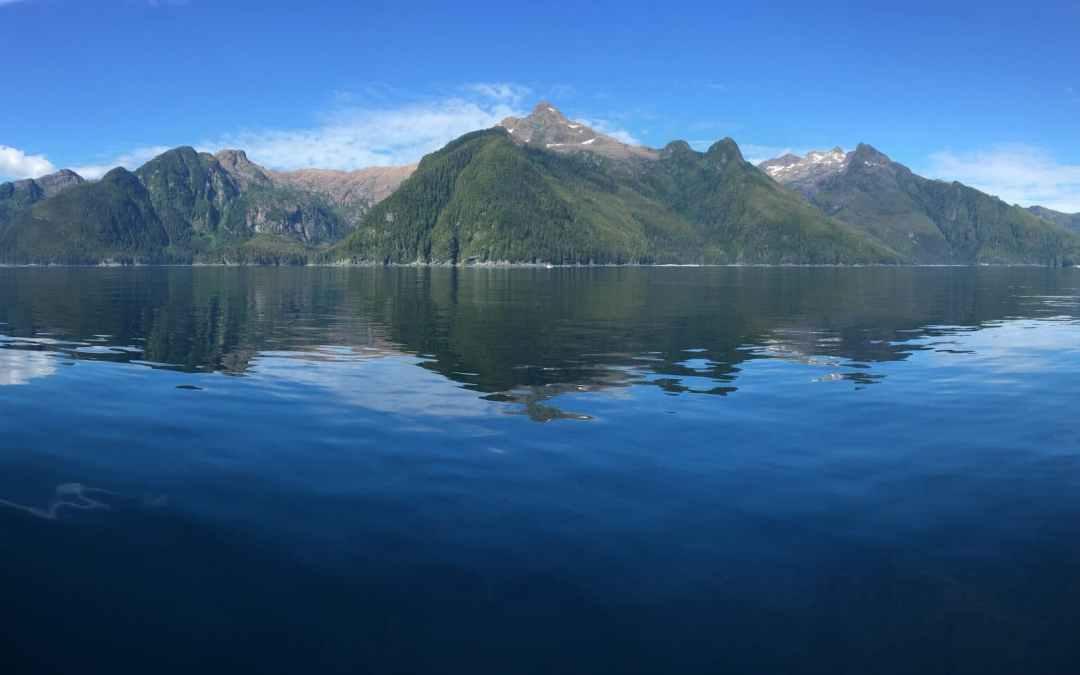 Picture perfect Wild Alaska