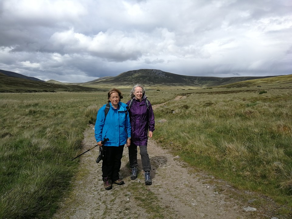 Wildlife Walk in the Cairngorms