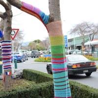 Greerton Yarn Bombs 2016