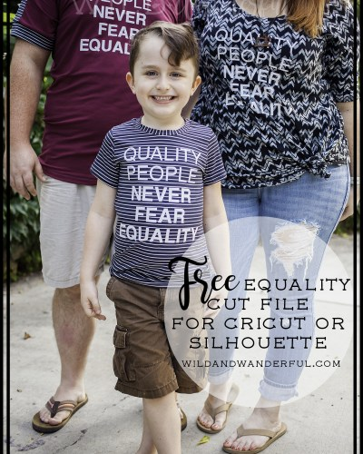 Quality People Never Fear Equality | FREE Cut File!