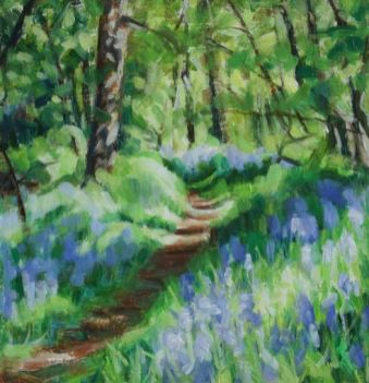 KAC Killearn Glen Bluebells 3